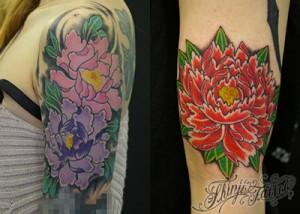 2種類の牡丹の花